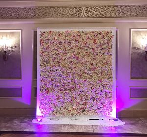 Stunning flower wall available for rent